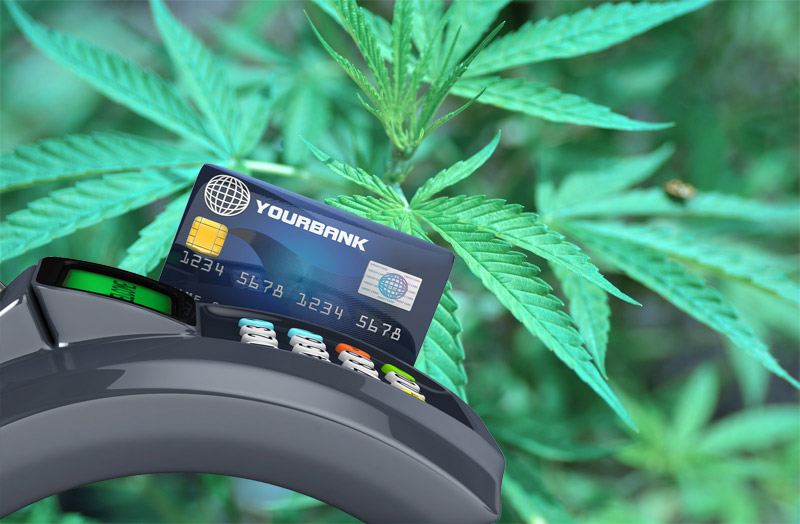 Marijuana Credit Ca...